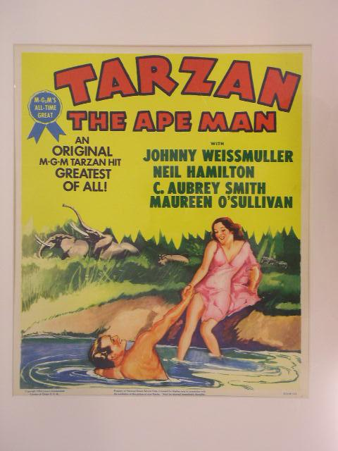"Image for ""Tarzan the Ape Man"""