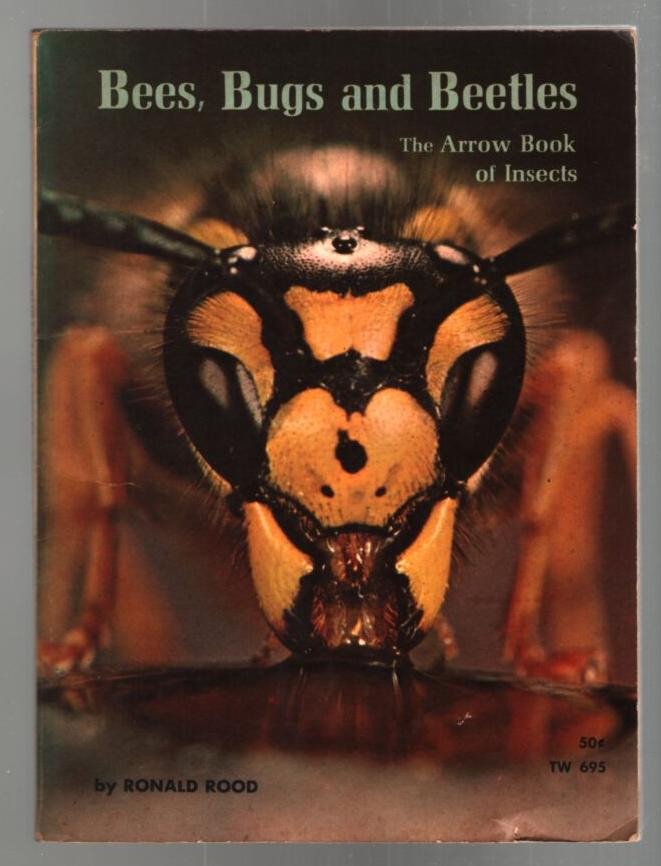 Image for Bees, Bugs and Beetles: The Arrow Book of Insects