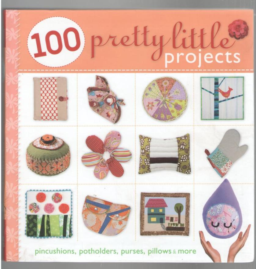 Image for 100 Pretty Little Projects