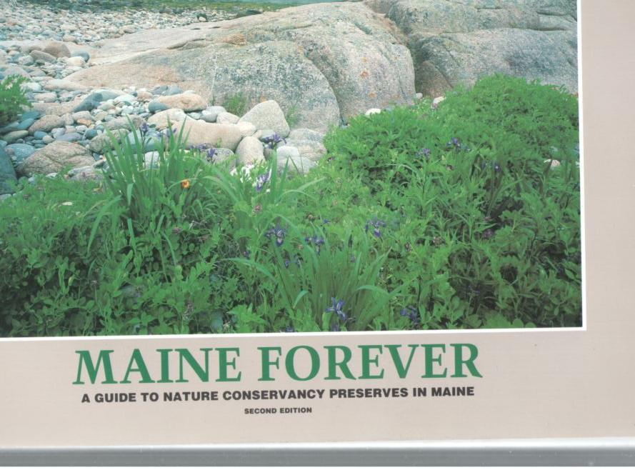Image for Maine Forever: A Guide to Nature Conservancy Preserves in Maine