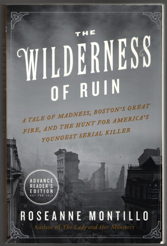 Image for The Wilderness of Ruin: A Tale of Madness, Fire, and the Hunt for America's Youngest Serial Killer