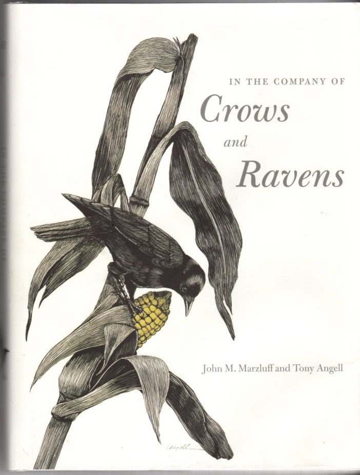 Image for In the Company of Crows and Ravens