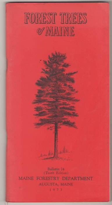 Image for Forest Trees of Maine