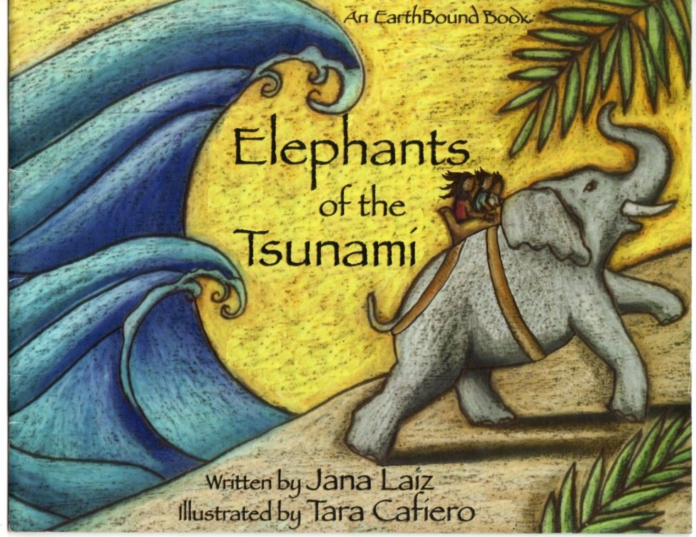 Image for Elephants of the Tsunami