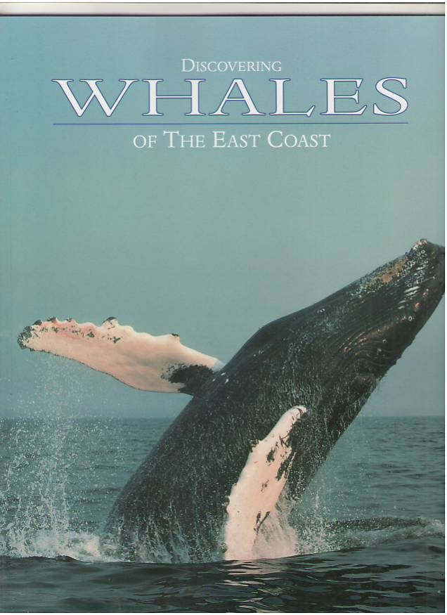 Image for Discovering Whales of the East Coast