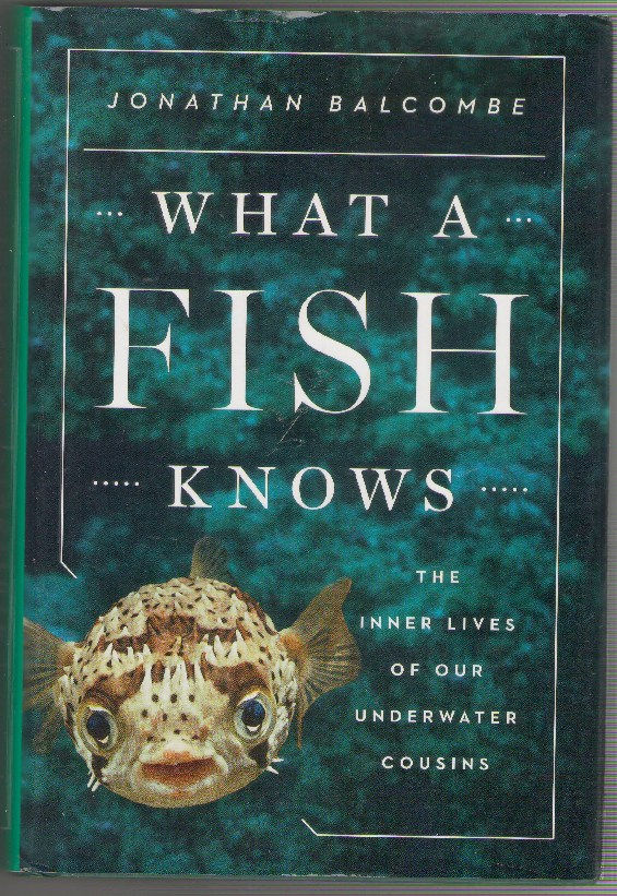 Image for What a Fish Knows: The Inner Lives of Our Underwater Cousins